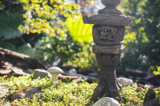 sun valley landscaping garden ideas
