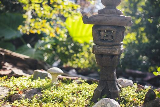 sun valley landscaping garden ideas
