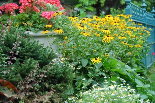 garden ideas sun valley landscaping