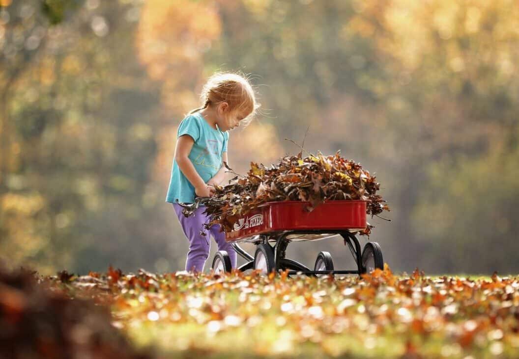 little girl picking up leaves